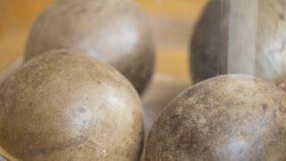 羅漢果(ラカンカ)の果実